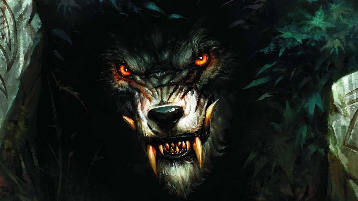 Заставки на телефон скачать волки (12)