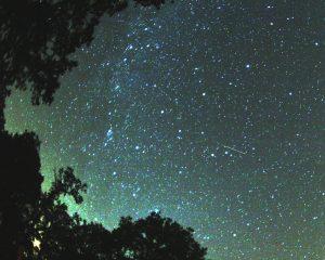 Звездное небо в августе фото   обои (23)