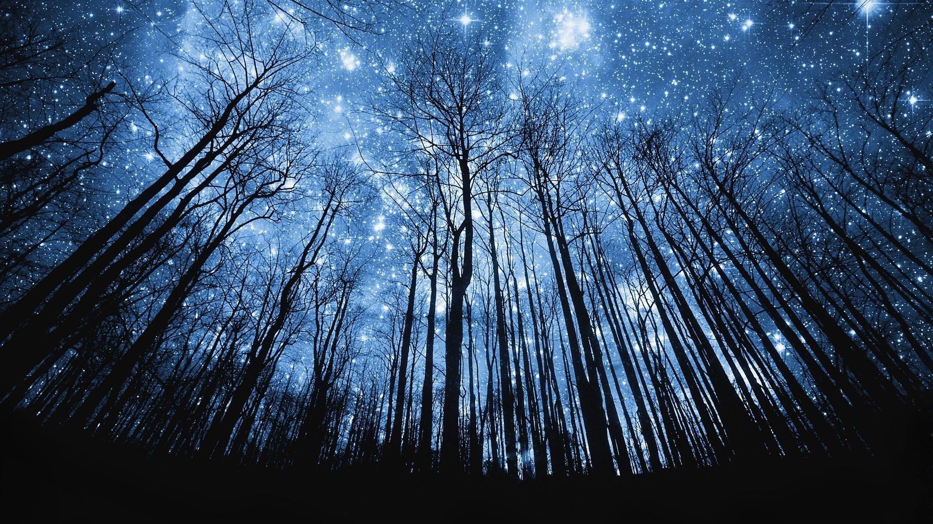 Звездное небо   картинки на рабочий стол телефона (16)
