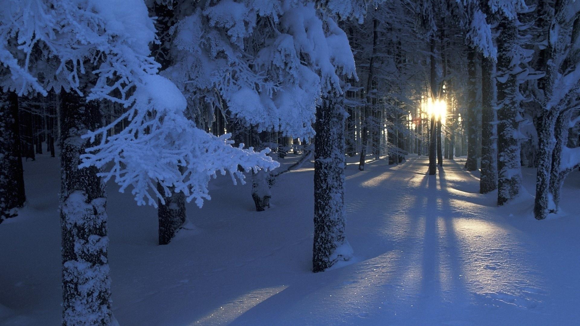 Зима в городе   обои для рабочего стола (15)