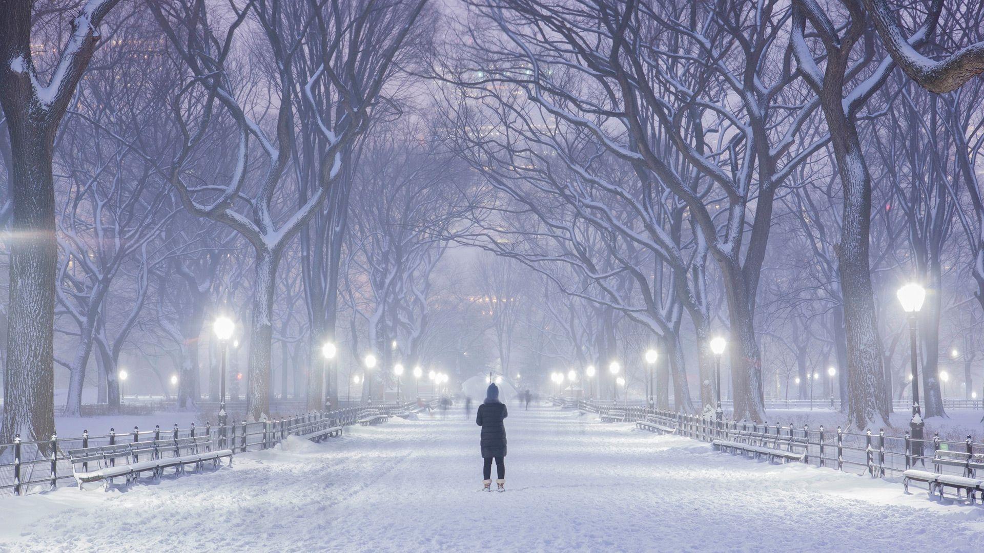 Зима в городе   обои для рабочего стола (25)