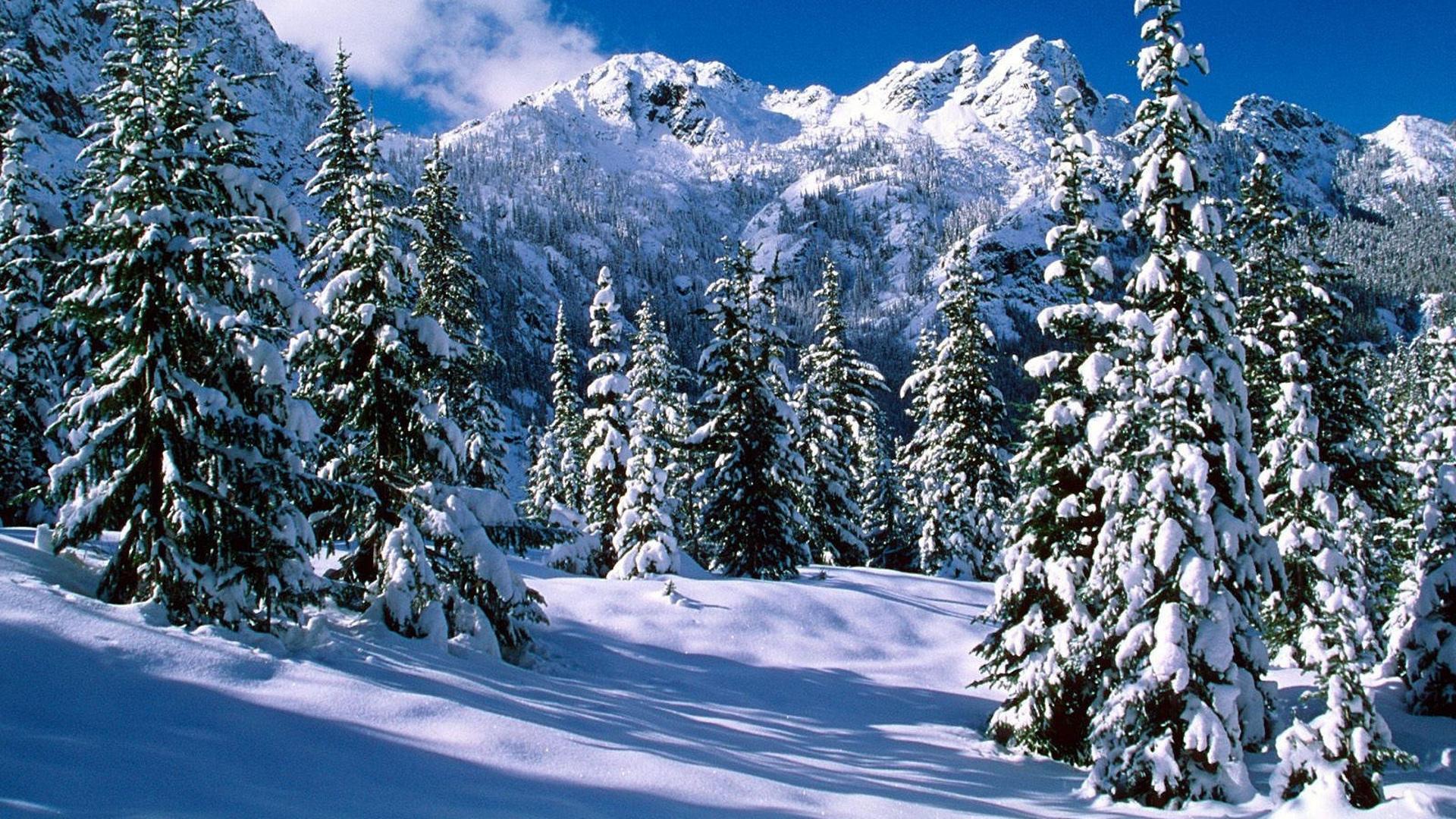 Зима в городе   обои для рабочего стола (30)