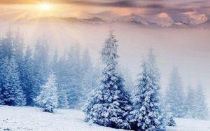 Зима красивые пейзажи картинки и фото 025