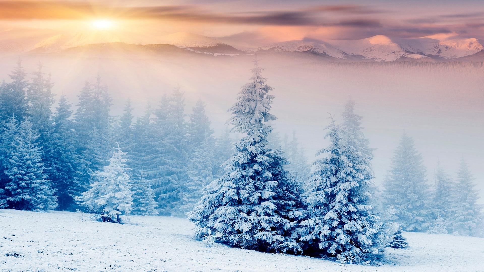 Зима обои на рабочий стол   лучшие фото (1)