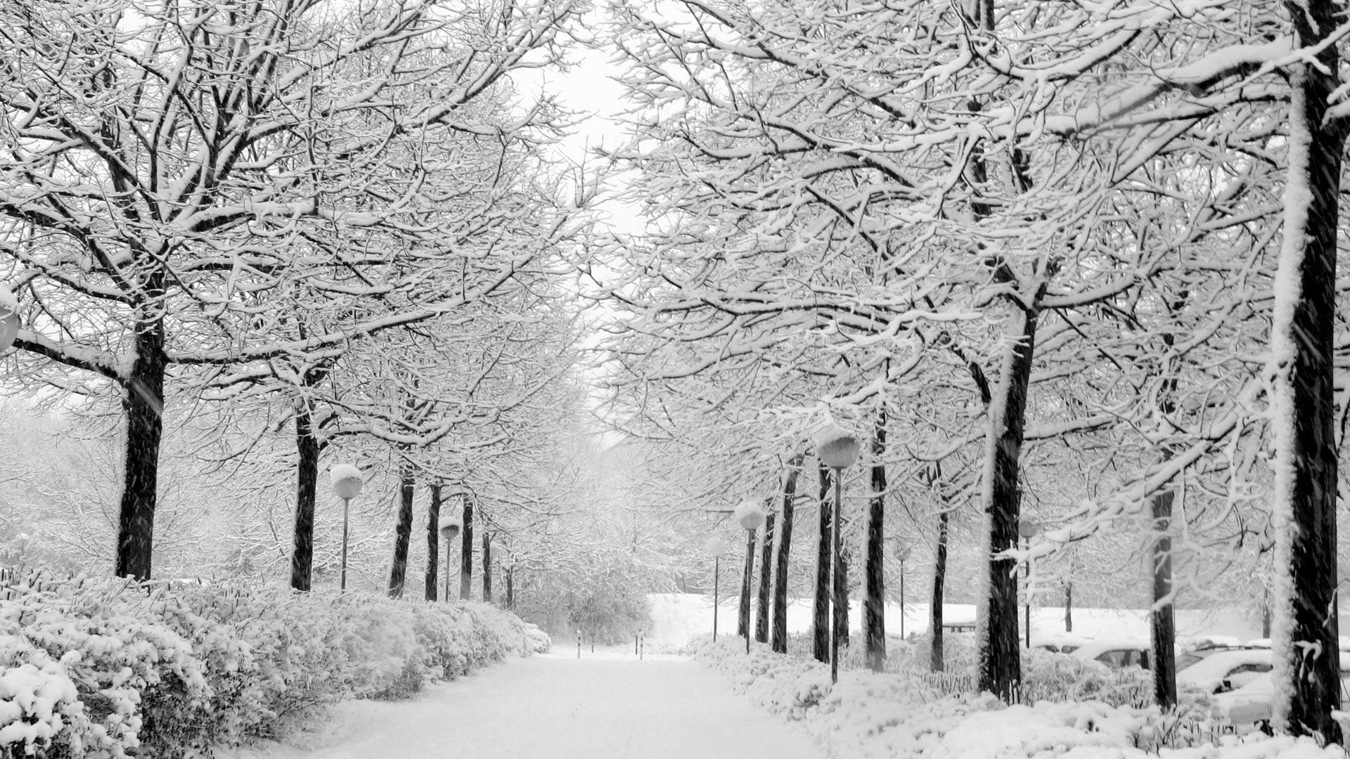Зима обои на рабочий стол   лучшие фото (12)