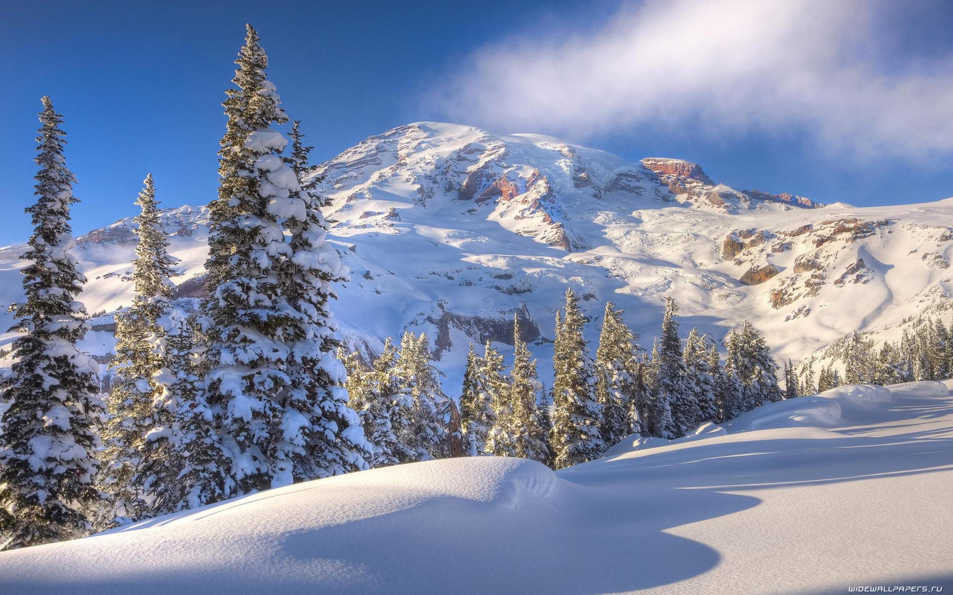 Зима обои на рабочий стол   лучшие фото (15)