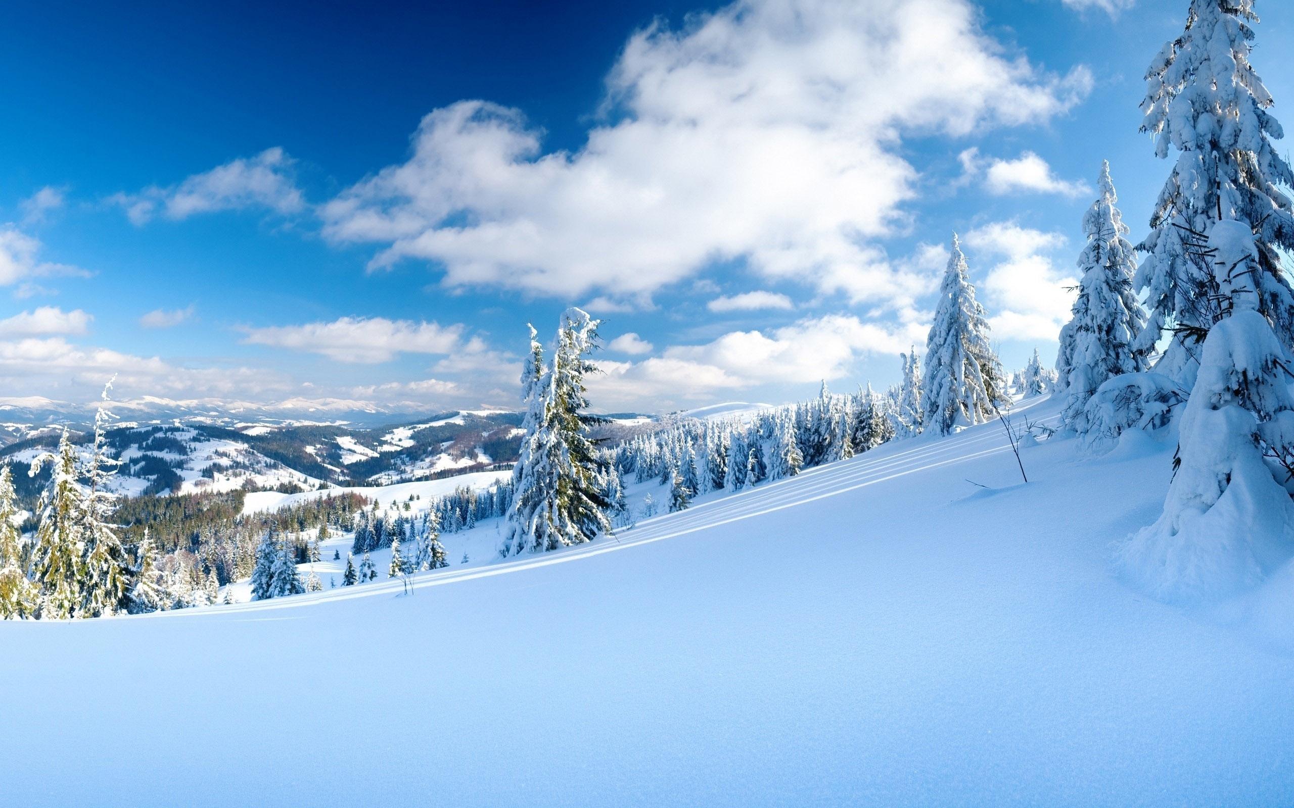 Зима обои на рабочий стол   лучшие фото (6)