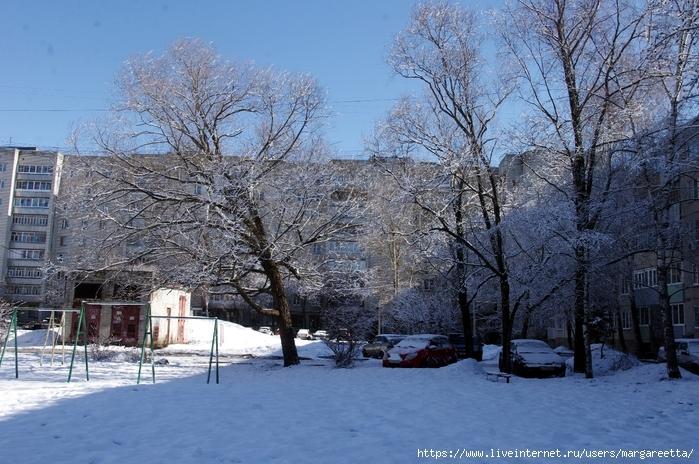 Зимняя сказка картинки красивые и интересные004