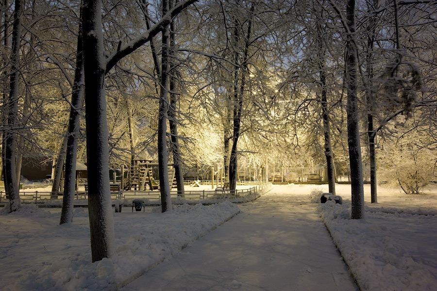 Зимняя сказка картинки красивые и интересные008
