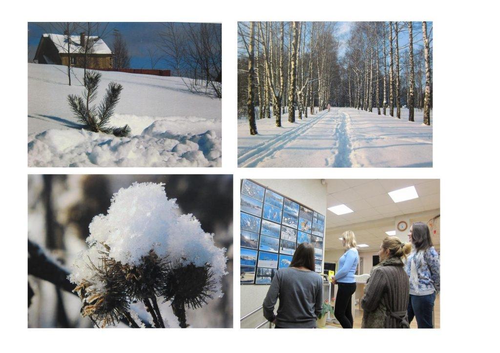Зимняя сказка картинки красивые и интересные014