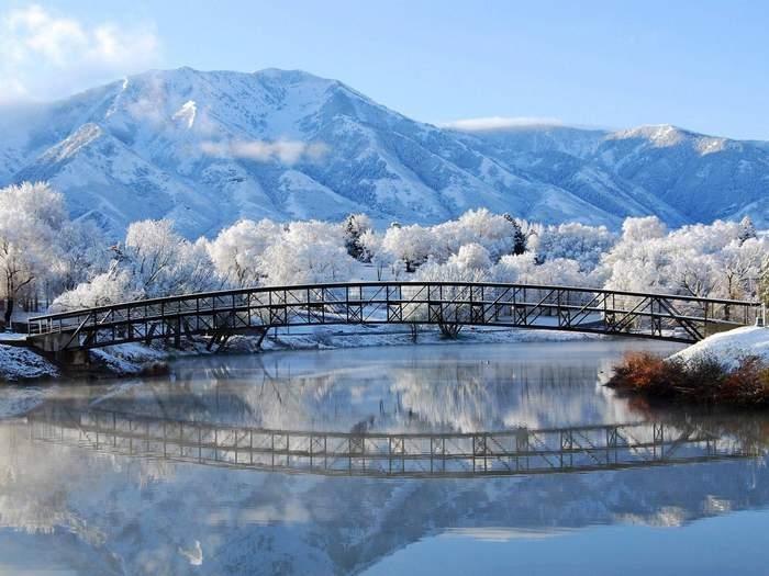 Зимняя сказка картинки красивые и интересные016