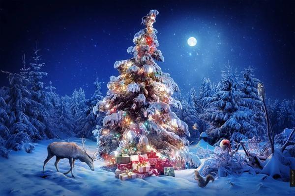 Зимняя сказка картинки красивые и интересные023