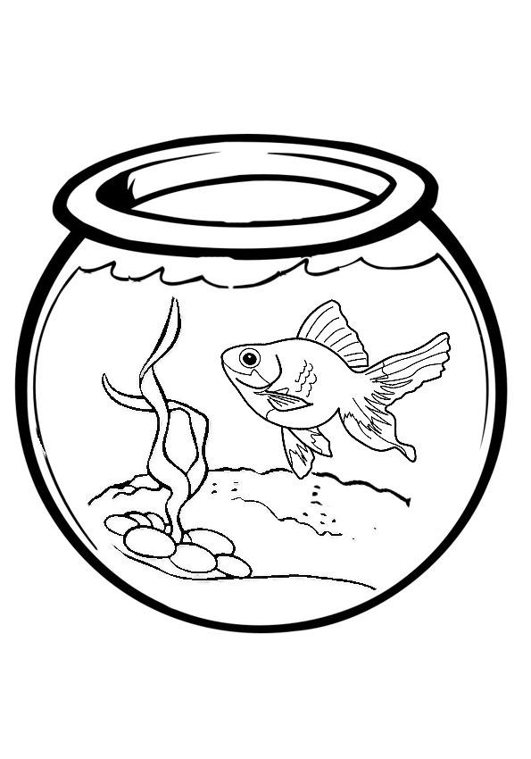 Картинки аквариума для распечатки
