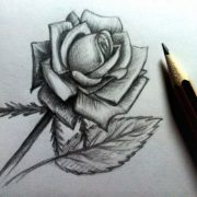 Идеи для рисования простым карандашом 020