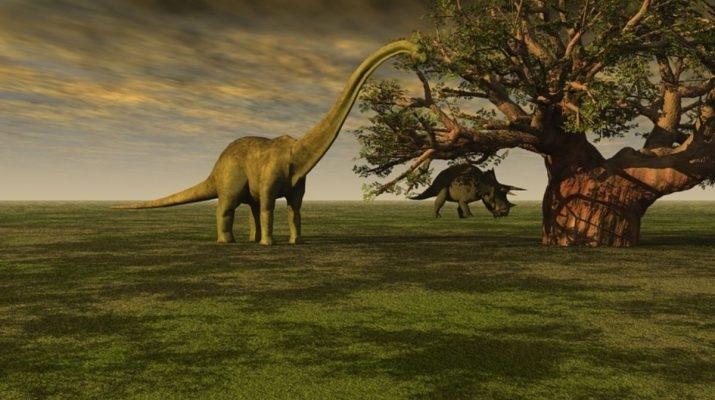 Какие были раньше динозавры   картинки 003