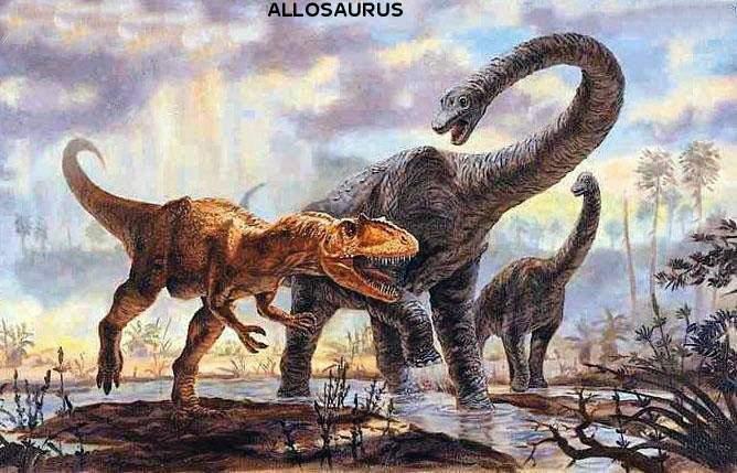 Какие были раньше динозавры   картинки 004