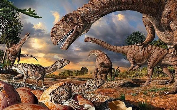 Какие были раньше динозавры   картинки 005