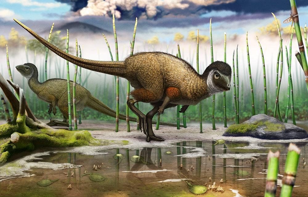 Какие были раньше динозавры   картинки 006