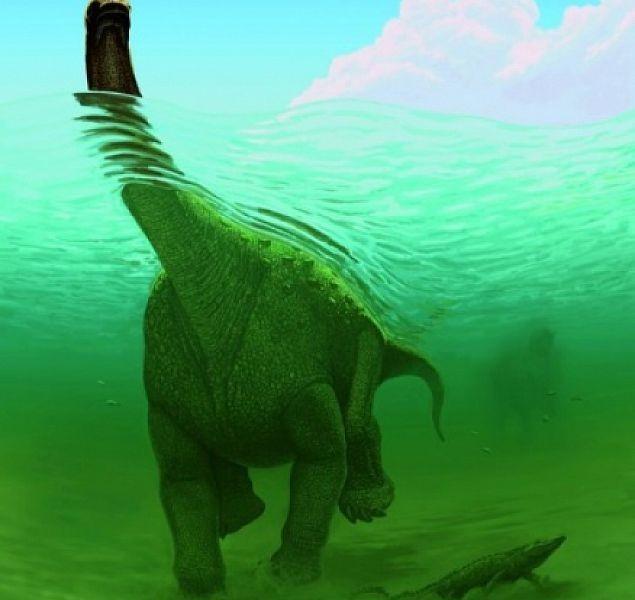 Какие были раньше динозавры   картинки 014