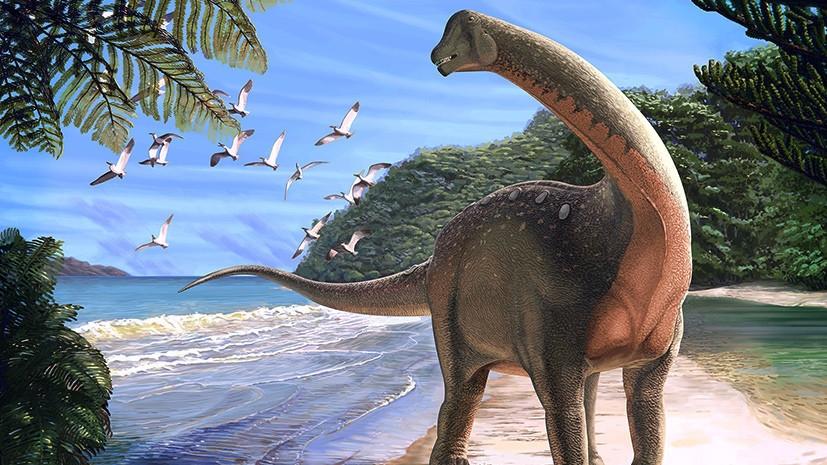 Какие были раньше динозавры   картинки 017