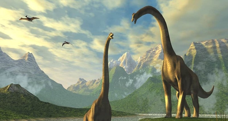 Какие были раньше динозавры   картинки 018