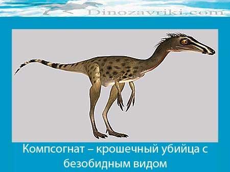 Какие были раньше динозавры   картинки 022