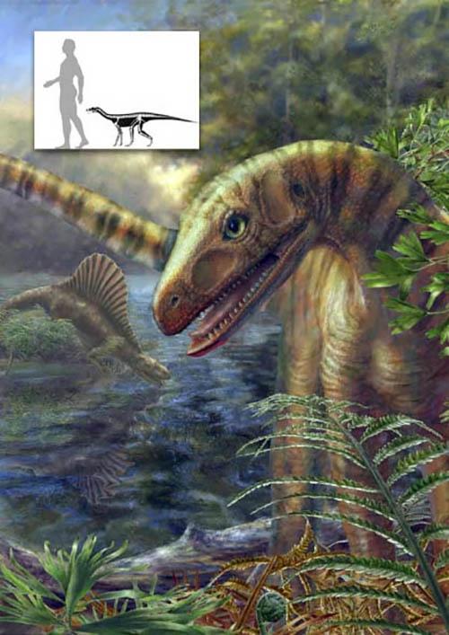 Какие были раньше динозавры   картинки 023