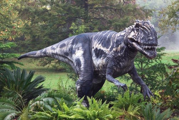 Какие были раньше динозавры   картинки 024