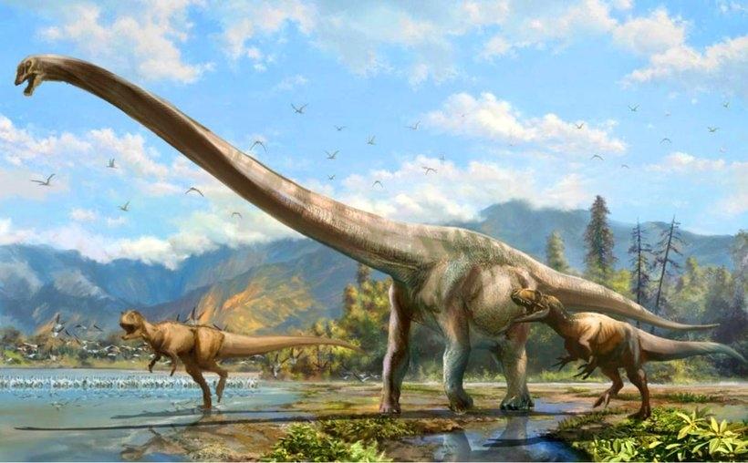 Какие были раньше динозавры   картинки 026