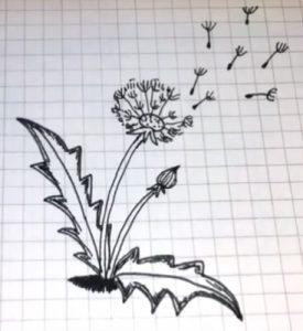 Как изобразить ветер на рисунке   картинки 026