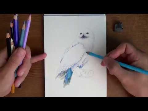 Как нарисовать рисунок Гарри Поттер   подборка 014
