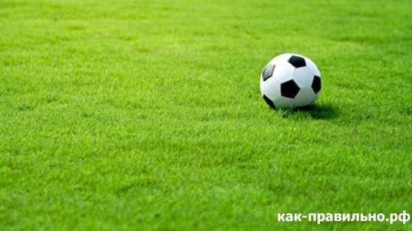 Как нарисовать футбольное поле с игроками ребенку   подборка 025