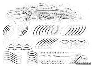 Каллиграфический алфавит картинки и рисунки026