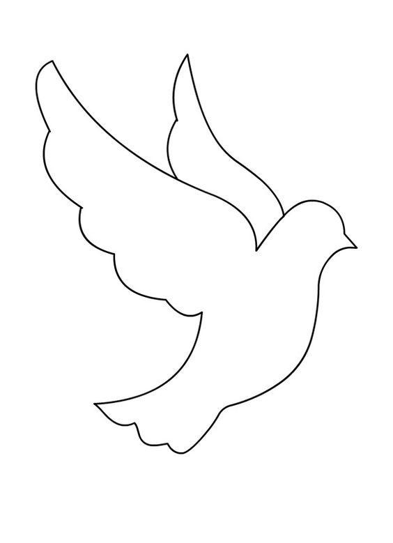 Картинка голубя для детей   подборка 005