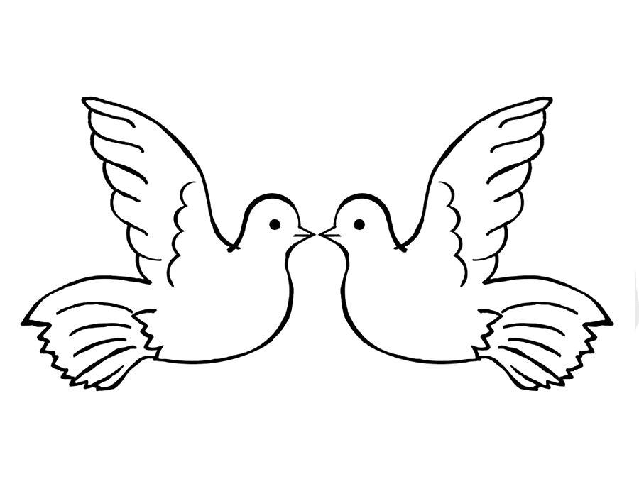 Картинка голубя для детей   подборка 008
