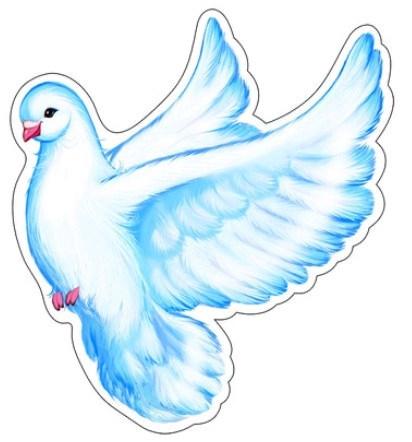 Картинка голубя для детей   подборка 013