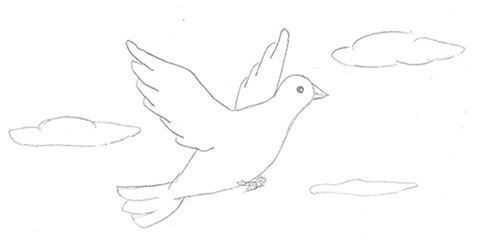 Картинка голубя для детей   подборка 017