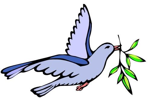 Картинка голубя для детей   подборка 022