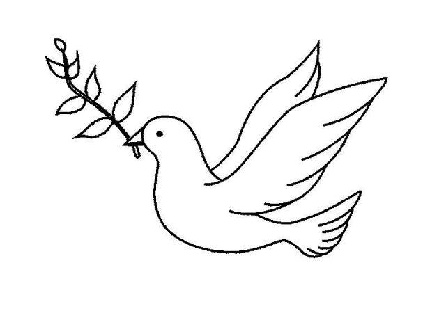 Картинка голубя для детей   подборка 024