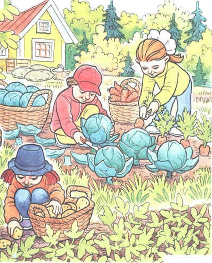 Картинки для детей работа в саду и огороде