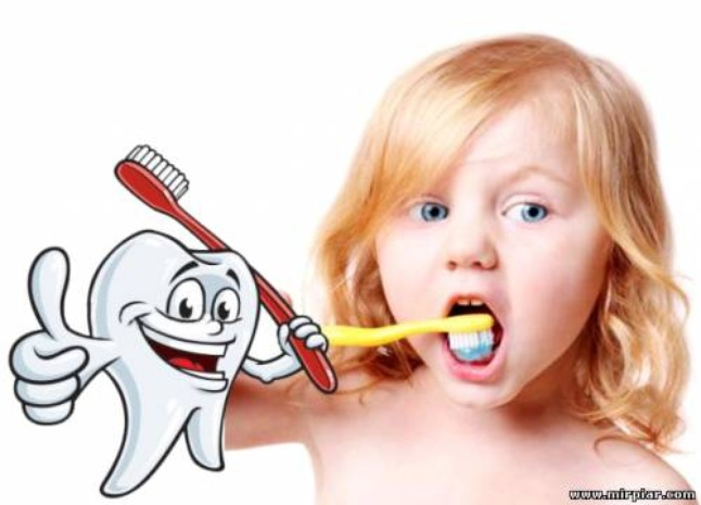 Картинка для детей чистить зубы   фото 006