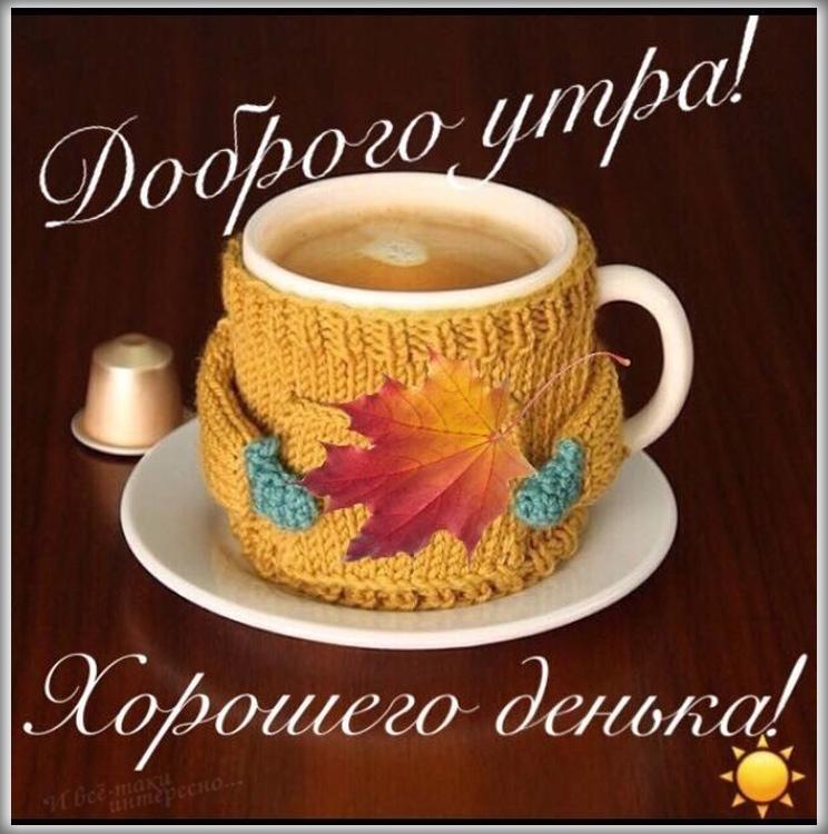 Картинка доброго утра и хорошего дня 012