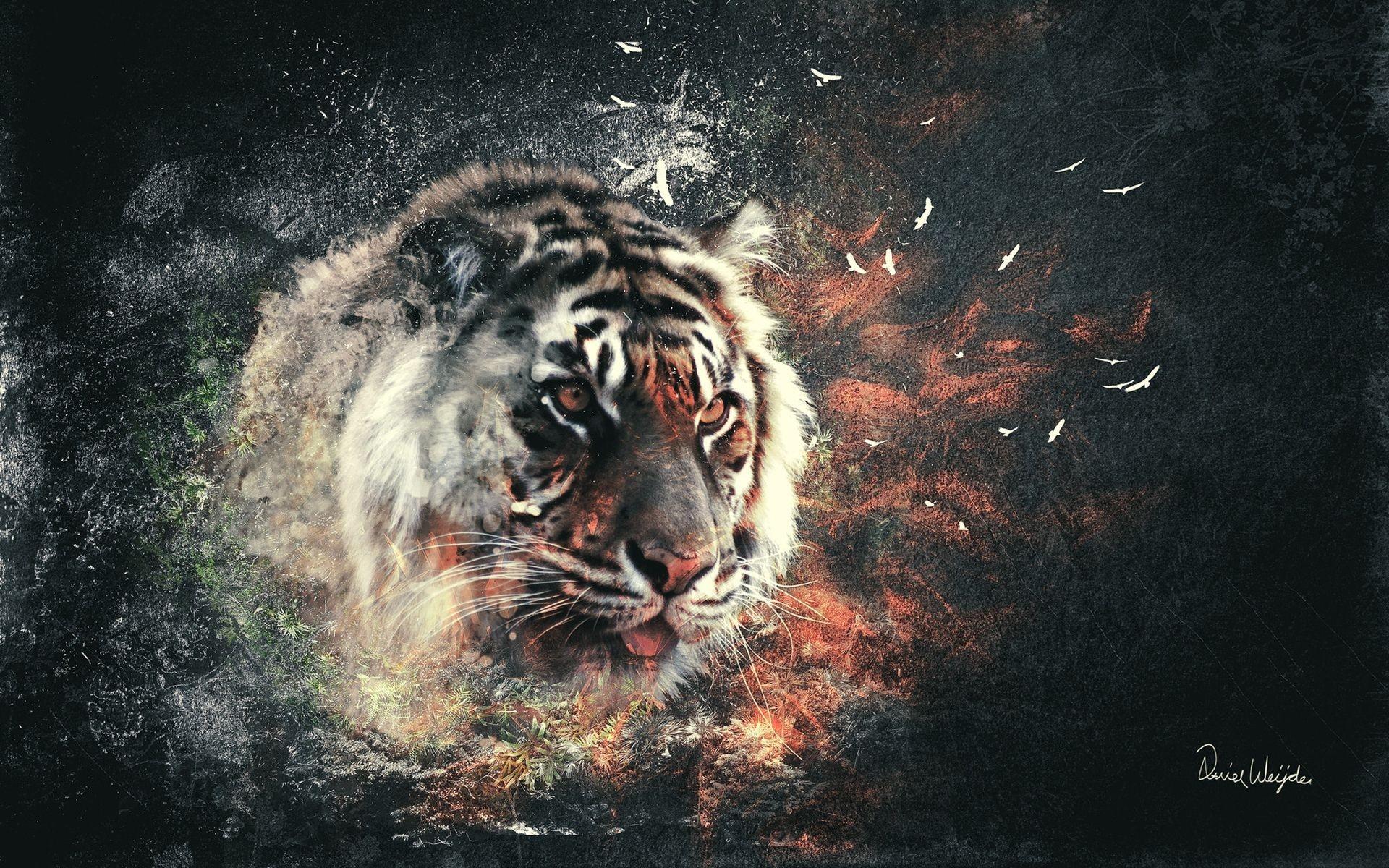 Картинка на рабочий стол тигр (3)