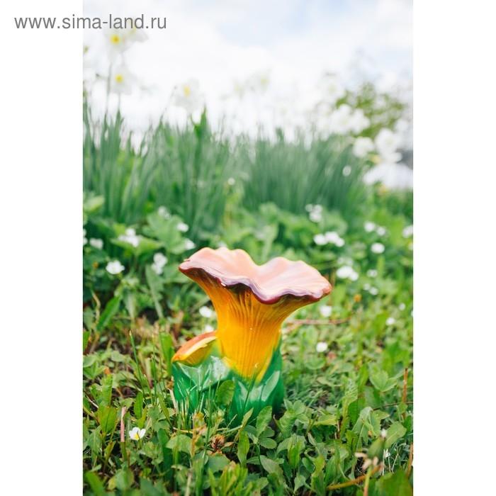Картинка рыжик гриб для детей   подборка 020