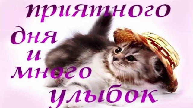 Картинка смешная удачного дня   подборка017