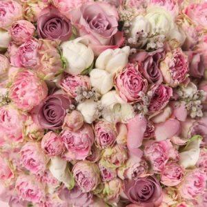 Картинка цветы фоновая   подборка 024