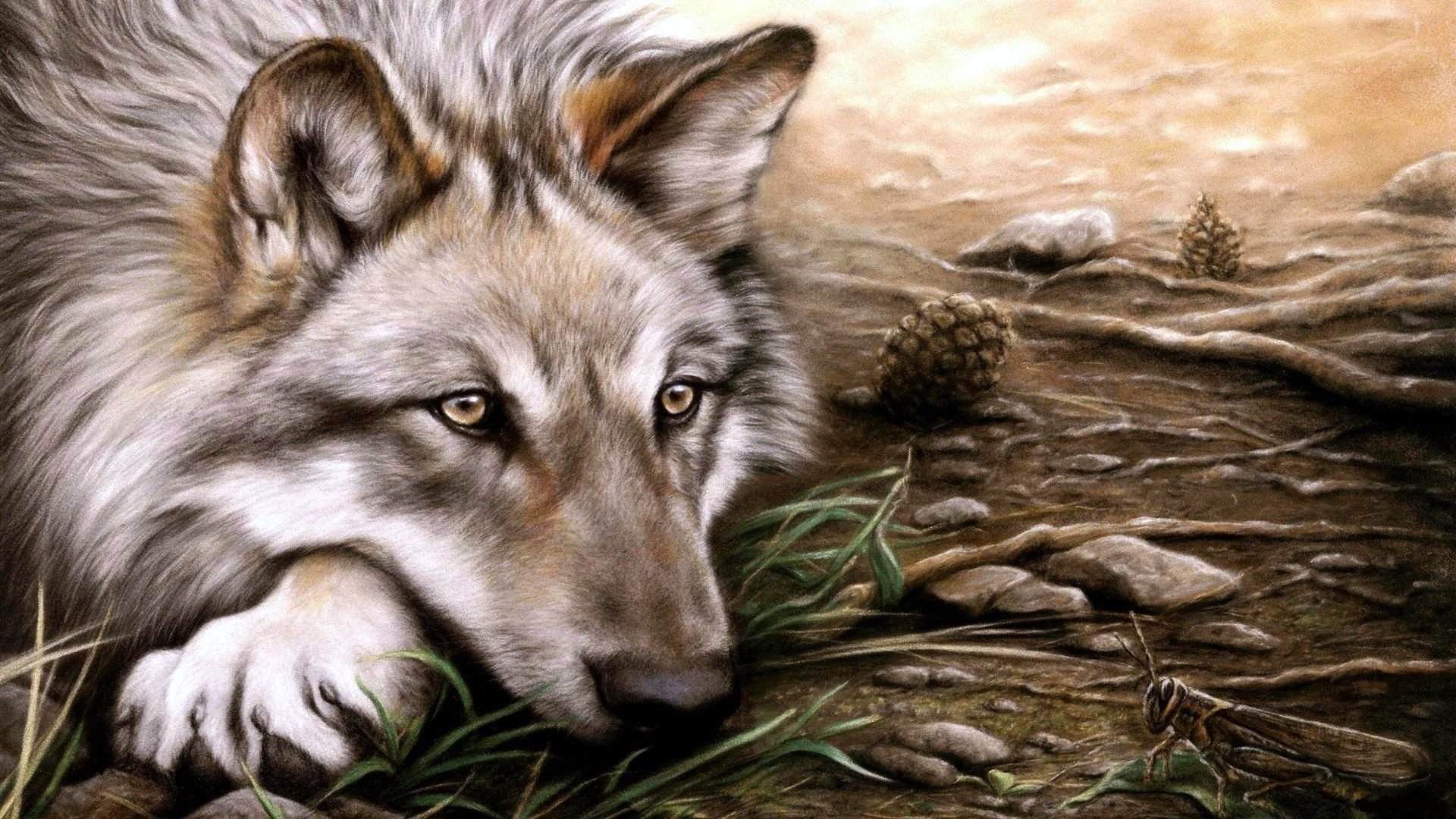 Картинки Волки скачать на рабочий стол бесплатно (1)