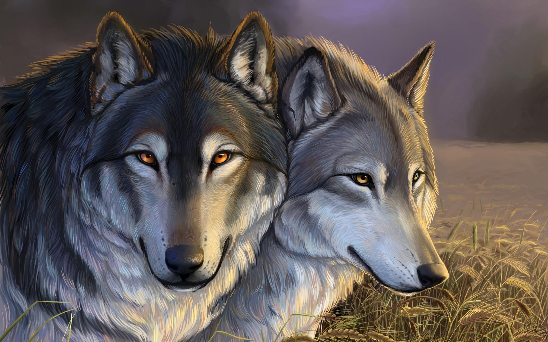 Картинки Волки скачать на рабочий стол бесплатно (5)