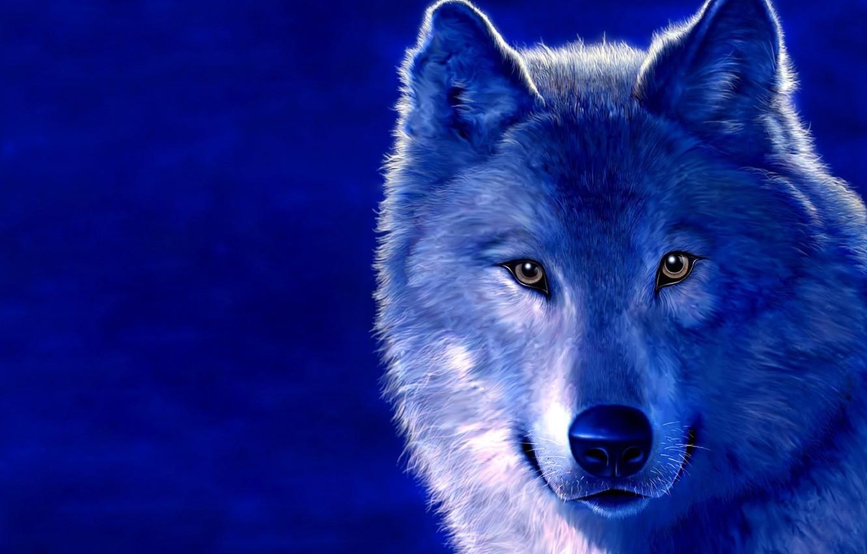 качественные картинки с волками непосредственной