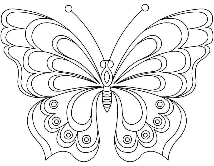 Картинки бабочки для срисовки для детей 027